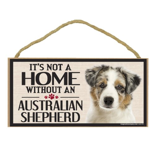 Australian Shepherd Training: Tips and Tricks To Help You With Your Dog