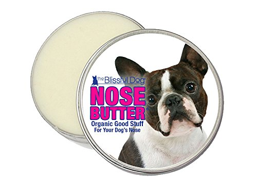 Giving This To Your Boston Terrier Daily Could Help Alleviate Painful Skin Allergies