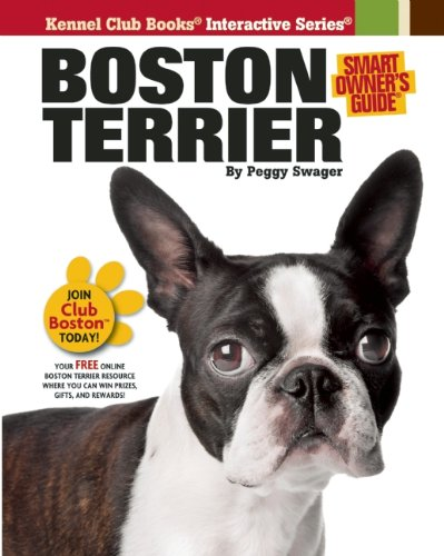 Top Tips To Live Together With Your Boston Terrier Puppies