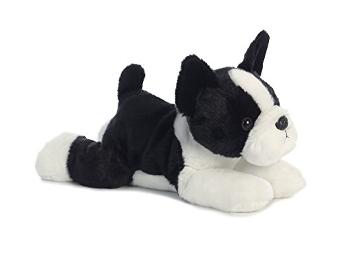 Boston Terrier Puppy Training: How To Train Your New Dog