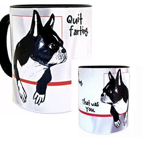 Know the Facts about Boston terrier Puppies for Sale