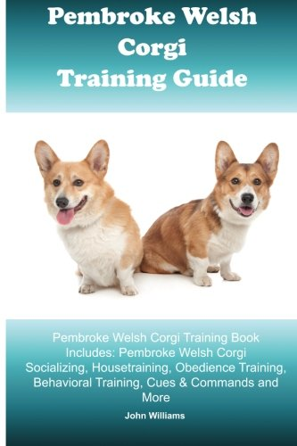 Pembroke Welsh Corgi Dog Breed Info And Facts