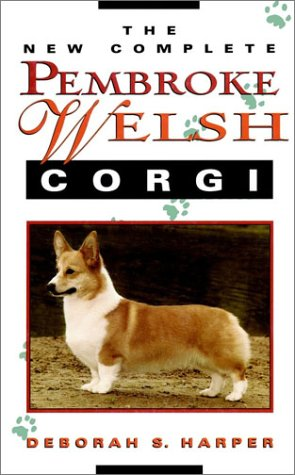 Pembroke Welsh Corgi Video: Pembroke Welsh Corgi eating corn