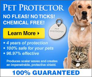No more ticks and fleas