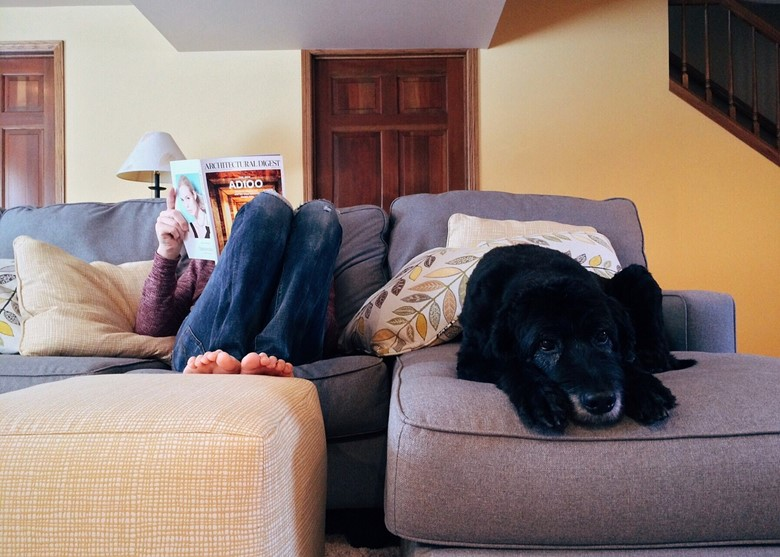 How to Keep a Dog-Friendly Home Odor-Free and Clean