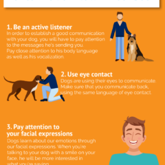 dog-communication