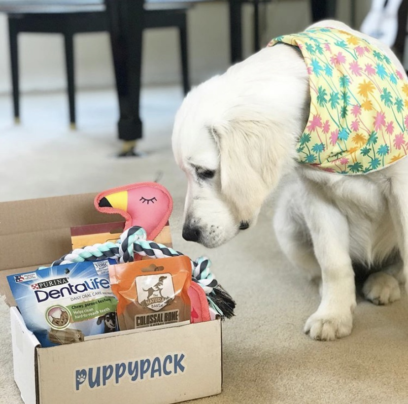 How to Get the Best Treat for Your Dog from PuppyPack